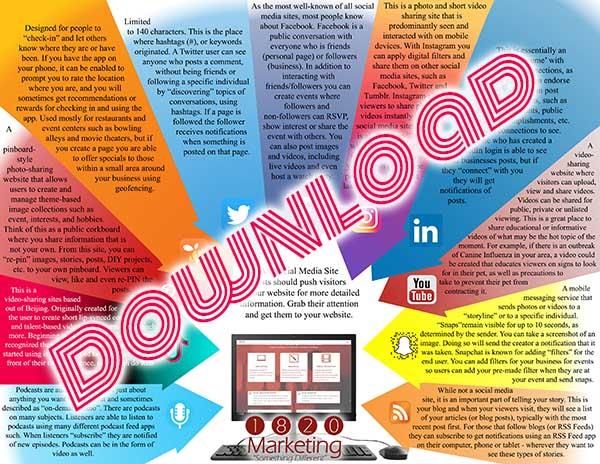 Social Media Infographic 600 x 464